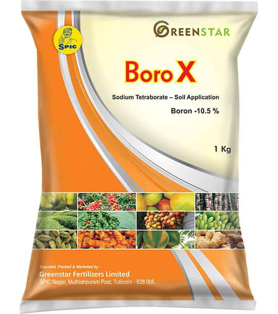 SPIC Boro X